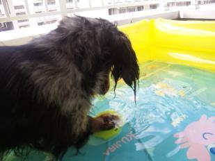 SILK水遊び3