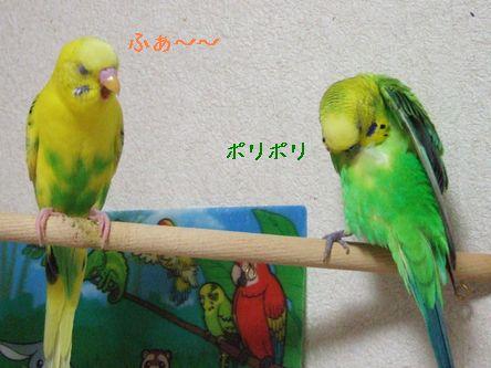 2008_0911_0053.jpg