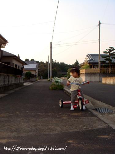 三輪車でお散歩