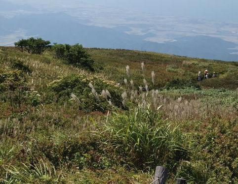 上野登山道 077