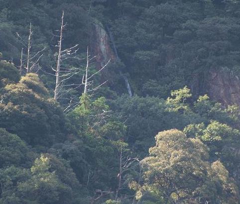幻の滝 079