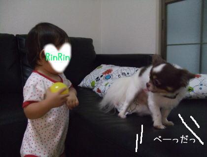 imagea10.jpg