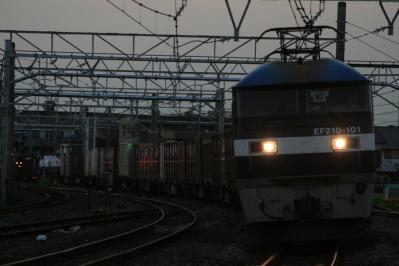 IMG_9915-1.jpg