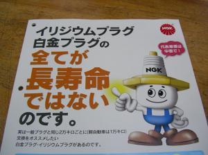 IMGP8366-S.jpg