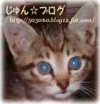 じゅん☆ブログ