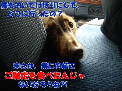 IMGP6308_convert_20090106164705.jpg