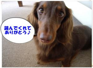 IMGP72801_convert_20090612102510.jpg
