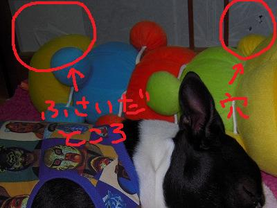 RSCN7575.jpg