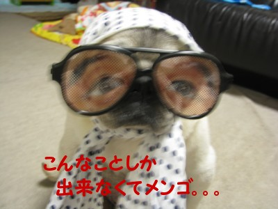 IMG_1056.jpg