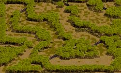 スモーキ諸島 密林地帯