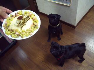 ぺちゃ・のん&ケーキ②