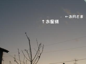 P1250140.jpg