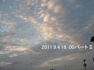 P9030584.jpg