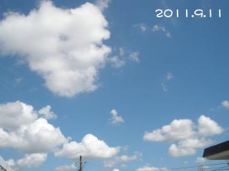 P9100597.jpg