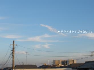 PA280812.jpg
