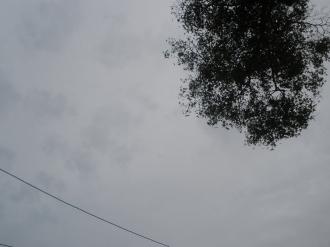 PB020838.jpg