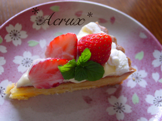 strawberry_torte1_20090604100639.jpg