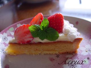 strawberry_torte2_20090604100651.jpg
