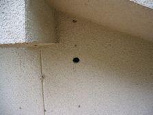 台所邸 配線穴