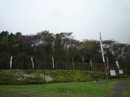 P1060214.jpg
