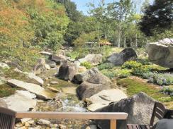 銀の森庭園3