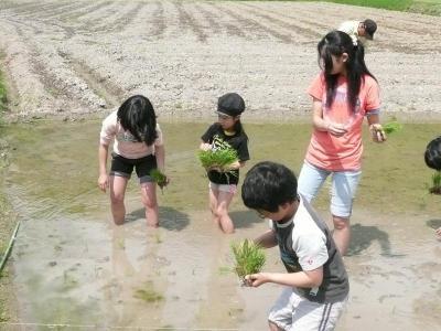 子ども達の田植え