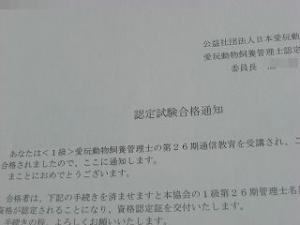 002_20110120222858.jpg