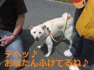 003_20100523201556.jpg