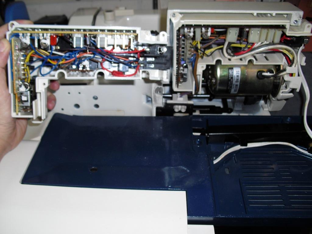 HZL550-FLORA-2.jpg