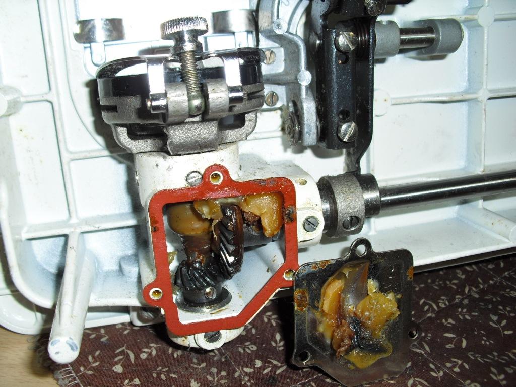 pacesetter(BU)-3.jpg