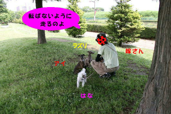 IMG_2-2.jpg