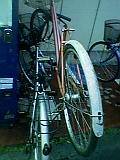 200604231818194