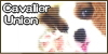 cavalier-union-code-100x50-03.jpg