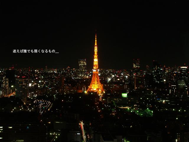 20081206_tokyo_5067_w800のコピー