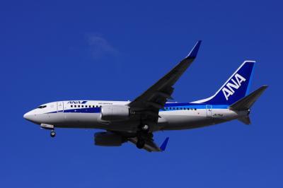 mx08-5-11-ana-737-4-itm.jpg