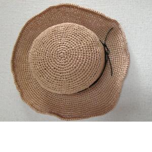 hat1_convert_20090511120307.jpg