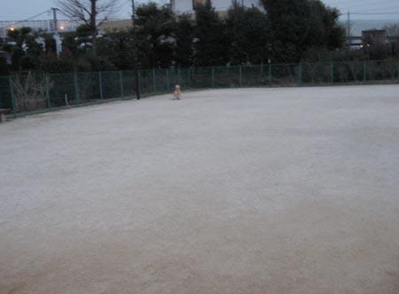 20070209_5.jpg