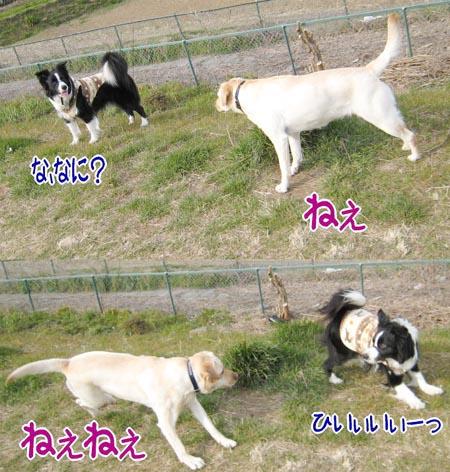 20070315_2.jpg