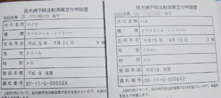 20070317_8.jpg