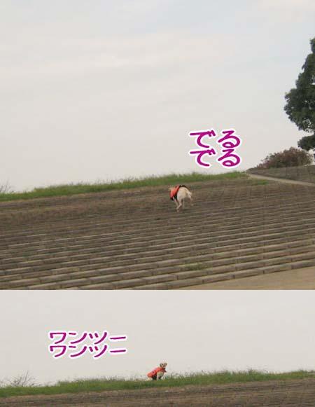 20070926_92.jpg