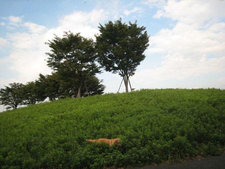20071012_94.jpg