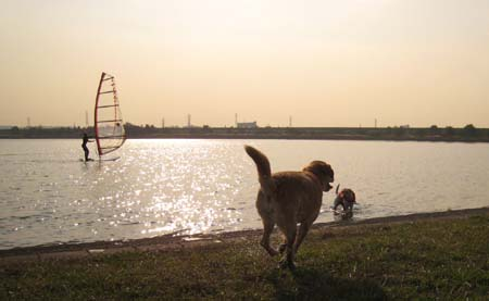 20071108_99.jpg