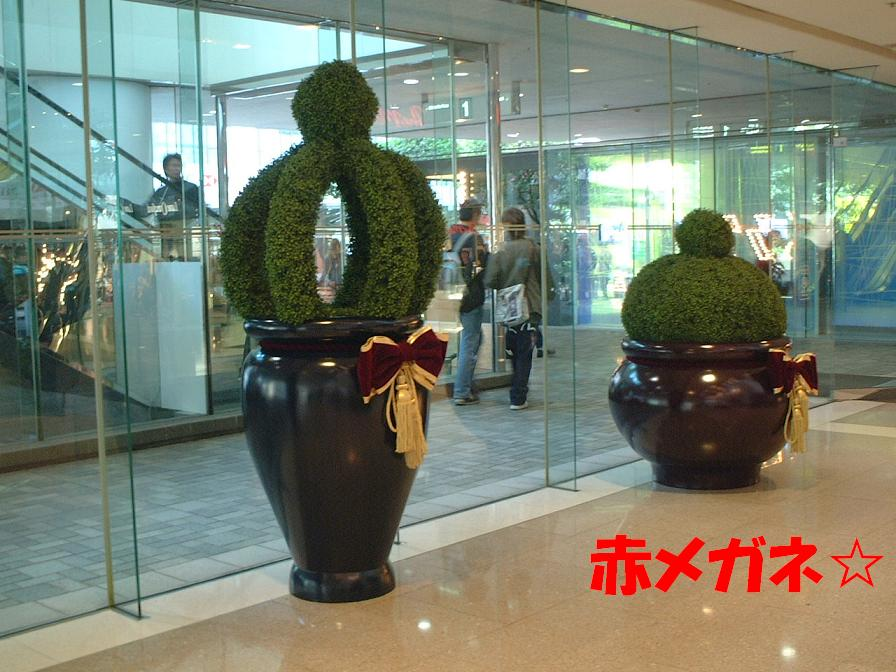 クリスマス仕様の植木:パシフィックプレイス