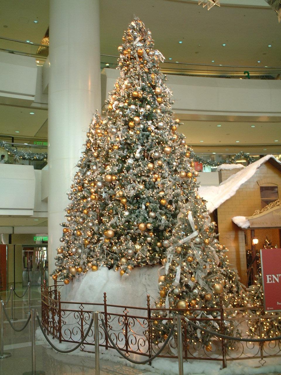 クリスマスツリー:パシフィックプレイス