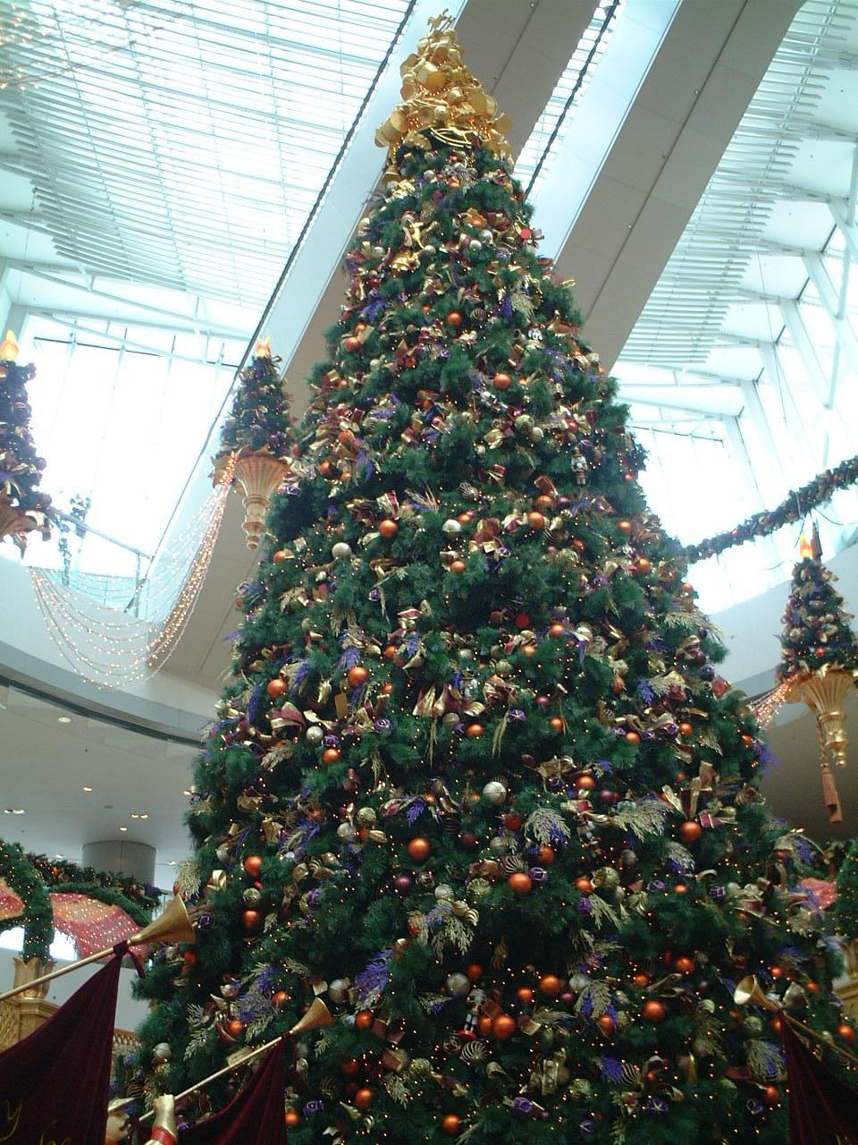 クリスマスツリー:ifcモール
