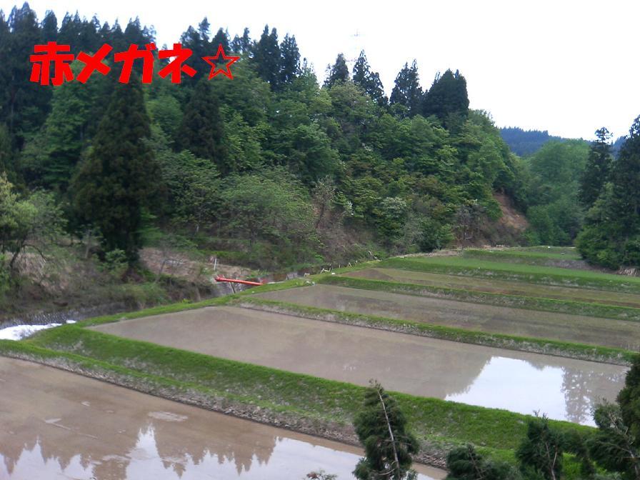裏山:新潟