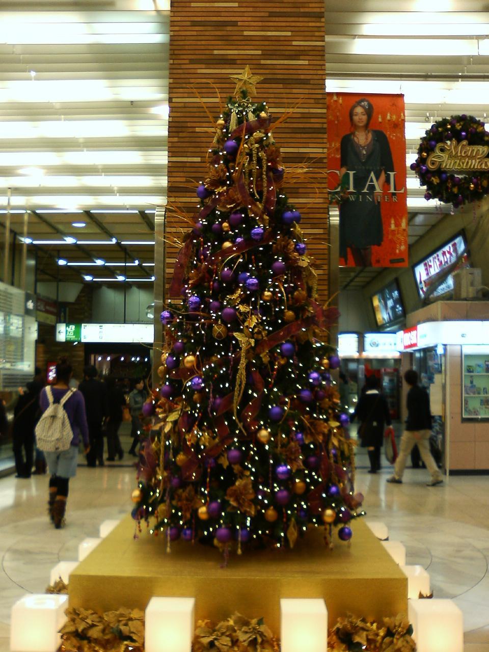 クリスマスツリー:シアル