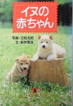 イヌの赤ちゃん 作家: 新井敦夫 写真: 立松光好