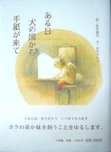 ある日犬の国から手紙が来て  松井雄功【絵】,田中マルコ【文】