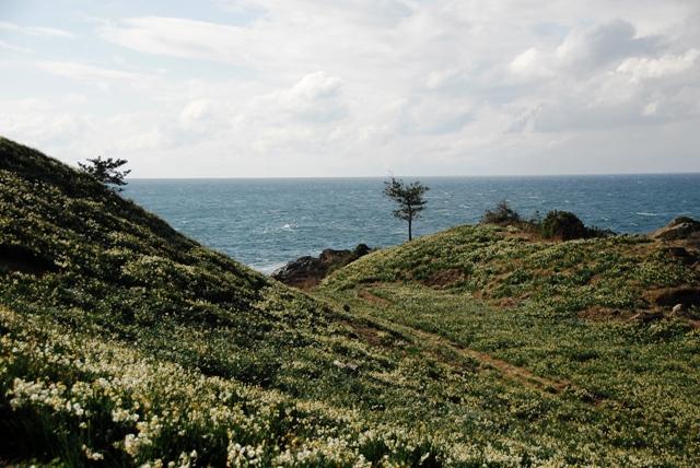 海とお花と一緒に楽しめる~癒しの空間